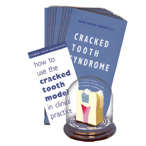 Cracked tooth model