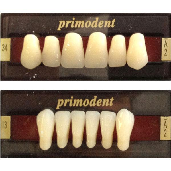 Primodent V-3 layer teeth