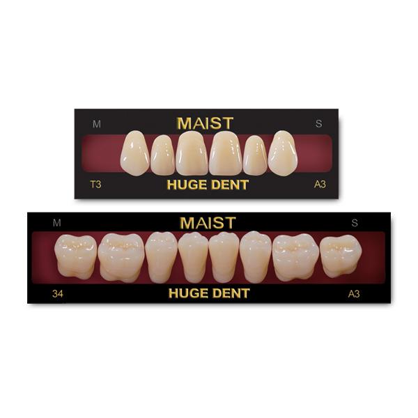 MAIST Synthetic Polymer Teeth